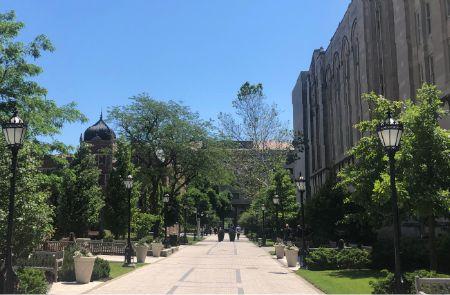 シカゴ大学の夏の風景
